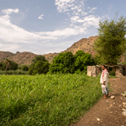 Farmer standing in front of his farmland in Yemen