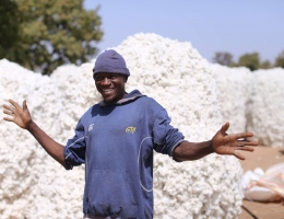 Burkina Faso Cotton