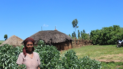 Woman Farmer in Ethiopia